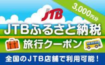 【ふぐ料理、海鮮料理、海水浴等】【南知多町】JTBふるさと納税旅行クーポン(3,000円分)