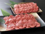 <宮崎県産黒毛和牛赤身焼肉用800gと焼肉のたれセット>