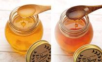 国産蜂蜜2本セット
