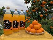 ■有田みかんジュース100%1000ml2本セット化粧箱入り【まごころ】