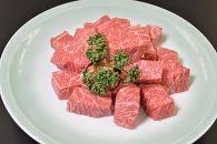 <京都 モリタ屋>京都肉カレー・シチュー用