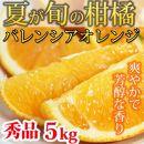 ■秀品希少な国産バレンシアオレンジ5kg