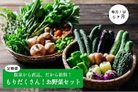 もりだくさんお野菜セット[6回定期便/5~10月]