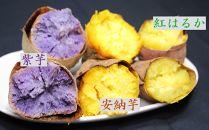 大崎町産 さつまいもの焼き芋 3種詰合せセット【安納芋と紅はるか・紫芋】 (約3kg)