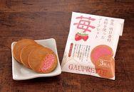 ゴーフレット【苺】