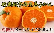【高糖系】貯蔵越冬丹生系みかん約5kg(S~Lサイズおまかせ)