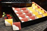 高級南高梅うす塩・はちみつ個包装計20粒入紀州塗箱網代模様仕上