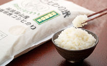 R2年産新米 丹波篠山産特別栽培コシヒカリ白米5kg