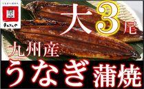 FY11-15-UG【丑の日配達指定】九州産うなぎ蒲焼大3尾(1尾あたり156~189g)