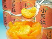坂出市のオリジナル品種[小原紅みかん12缶]の詰め合わせ