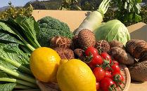 【産地直送定期便】季節の野菜 年6回(隔月お届け)+11月中旬~12月中旬頃は有田みかん10㎏をお届け