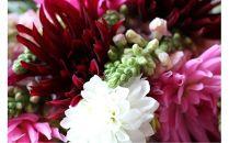 花福)年4回四季を楽しむ酒田のお花たちをお届けします<LotusGarden>
