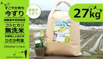 【新米】お米27kg(白米)今ずり・無洗米令和2年産コシヒカリ兵庫県但馬産