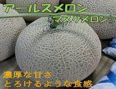 【斎藤農園/2玉】アールスメロン(マスクメロン)2玉/3kg程度
