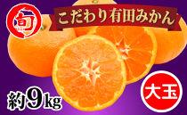 有田みかん たっぷり約9kg(大玉3L~2Lサイズ指定) 旬の味覚市場【こだわり】