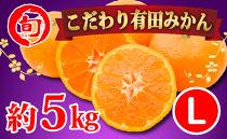 有田みかん 5kg(Lサイズ指定) 旬の味覚市場【こだわり】