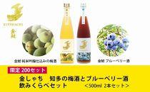 限定200セット!【金鯱】梅酒とブルーベリー酒500ml2本の飲み比べセット