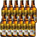 八海山RYDEENBEERライディーンビールピルスナー330ml×12本