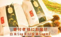 ◆【お米シェア】農家直送高島市産近江米コシヒカリ白米・玄米(5kg×各1袋)