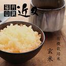 【有機栽培米】丹波篠山産コシヒカリ 玄米 5kg