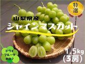 山梨県産シャインマスカット1.5kg(3房)&シャインのセミドライフルーツ(ミニ)付き