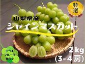 山梨県産シャインマスカット2kg(3〜4房)&シャインのセミドライフルーツ(ミニ)付き