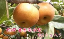有田の樹上成熟梨 特撰南水梨 約2kg