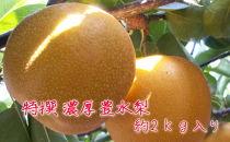 ※受付終了※【先行予約】有田の樹上成熟梨 特撰 豊水梨 約2kg