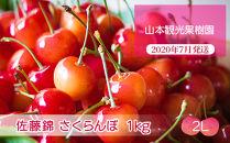 フルーツ王国余市産「佐藤錦」【2Lサイズ】1kg【山本観光果樹園】