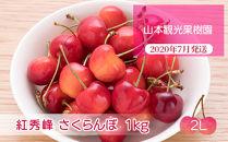 フルーツ王国余市産「紅秀峰」【2Lサイズ】1kg【山本観光果樹園】