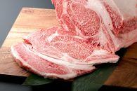 熊本県産 あか牛セット1kg【リブロース500g、カルビ焼肉500g】