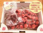 【もったいない農産物応援プロジェクト】原宿ベリーの冷凍イチゴ