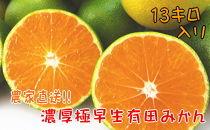 【2021年10月発送】【農家直送】濃厚極早生有田みかん 13kg