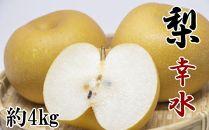 【厳選・産直】和歌山紀の川産の梨(幸水)約4kg【2021年度発送】