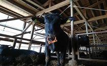 ◆近江牛シャトーブリアンかたまり/宝牧場【数量限定】
