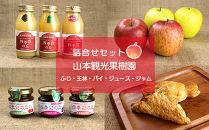 フルーツ王国余市産「ふじ/王林」とりんごジュース、⾃家製アップルパイ、ジャムの詰合せ【⼭本観光果樹園】
