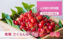 フルーツ王国余市産「南陽]2Lサイズ1kg【山本観光果樹園】