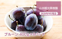 フルーツ王国余市産「プルーン」400g×8パック【山本観光果樹園】