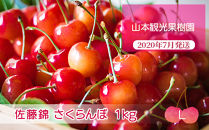 フルーツ王国余市産「佐藤錦」【Lサイズ】1kg【山本観光果樹園】
