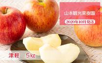 フルーツ王国余市産「津軽」5kg【山本観光果樹園】