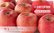 フルーツ王国余市産「早生ふじ」10kg【山本観光果樹園】
