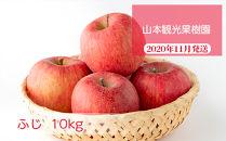 フルーツ王国余市産「ふじ」10kg【山本観光果樹園】