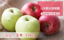フルーツ王国余市産「ふじ・王林」ミックス10kg【⼭本観光果樹園】