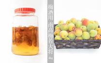 <2021年6月中旬頃発送>★県認定エコファーマー【梅酒用】南高梅若大将4kg