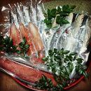 カツオ(タタキ) 赤イカ 干物3種セット