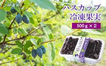 令和2年産ハスカップ冷凍果実(500g×2)
