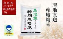 魚沼産コシヒカリ 特別栽培米5㎏県認証米