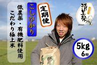 定期便5kg6回30kg低農薬極上米『こしひかり』