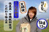 定期便5kg12回60kg低農薬極上米『こしひかり』