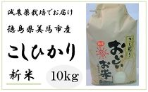 【先行予約】令和2年産新米![美馬市産]コシヒカリ精米10kg